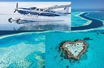 セスナで行く、グレートバリアリーフハートの珊瑚礁!ドリームツアー