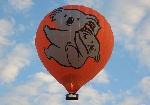 パームコーブの熱気球 オプショナルツアー