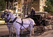 メルボルンの馬車に乗る オプショナルツアー