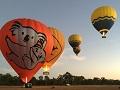ケアンズの熱気球 オプショナルツアー