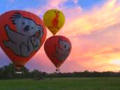 ゴールドコーストの熱気球 オプショナルツアー