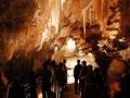 シドニーのジェノランケーブ鍾乳洞 オプショナルツアー