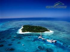 【コアラ割りゴールデン キャンペーン】グリーン島エコアドベンチャー(送迎なし)