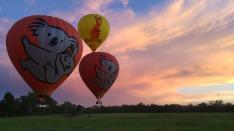 【コアラ割りゴールデン キャンペーン】バルーニング熱気球ツアー【30分飛行】