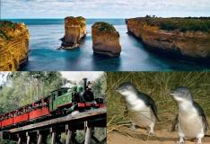 【GREAT SIGHTS】グレートオーシャンロード&ペンギンパレード&蒸気機関車